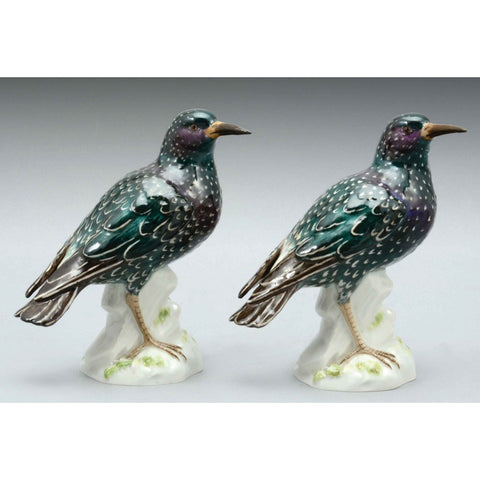 Meissen Porcelain Pair Of Common Starling