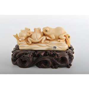 Mammoth Ivory- Resting Frogs