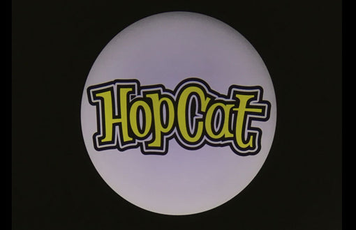 12TH SEPTEMBER 2018 CUSTOMER CASE—HopCat