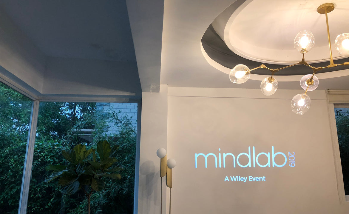 Mindlab-15W indoor projector