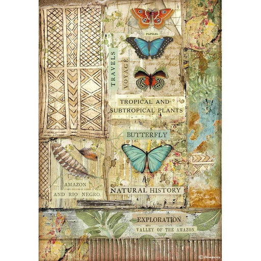 Stamperia Amazonia Rice Paper Sheet: Butterfly (DFSA4533)-Only One Life Creations