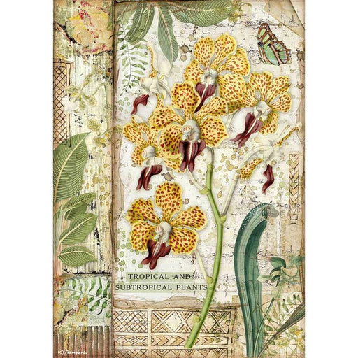Stamperia Amazonia Rice Paper Sheet: Orchid (DFSA4532)-Only One Life Creations