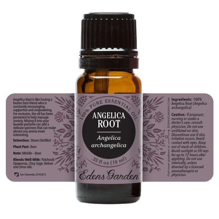 Angelica Root Essential Oil 10ml | Plant Therapy Malaysia, Plant Therapy essential oil, Plant Plant Therapy oil online