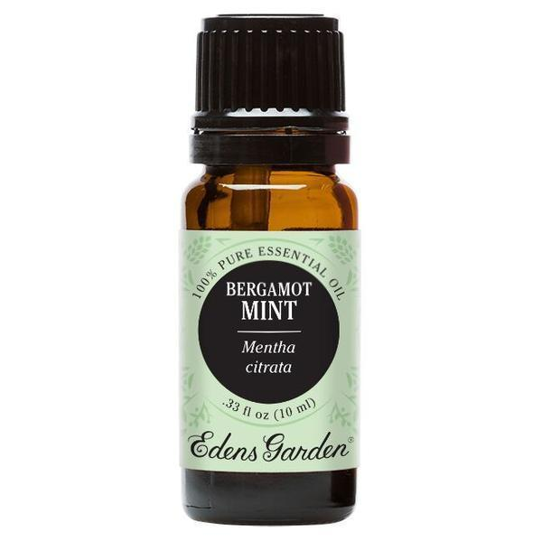 Bergamot Mint Essential Oil 10ml | Plant Therapy Malaysia, Plant Therapy essential oil, Plant Plant Therapy oil online