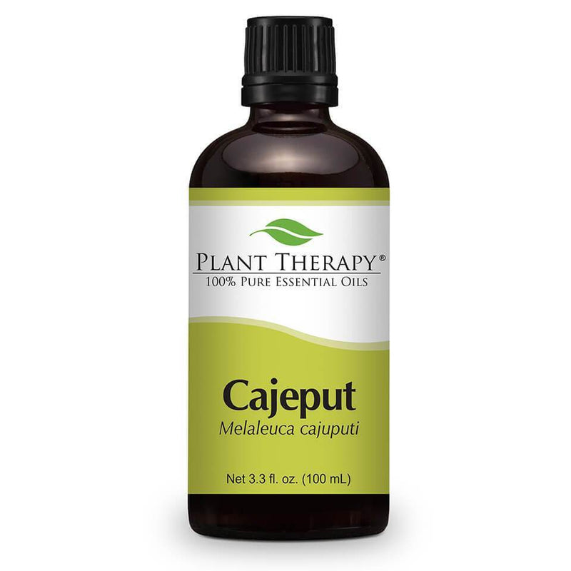 Plant Therapy Cajeput Essential Oil - OilyPod