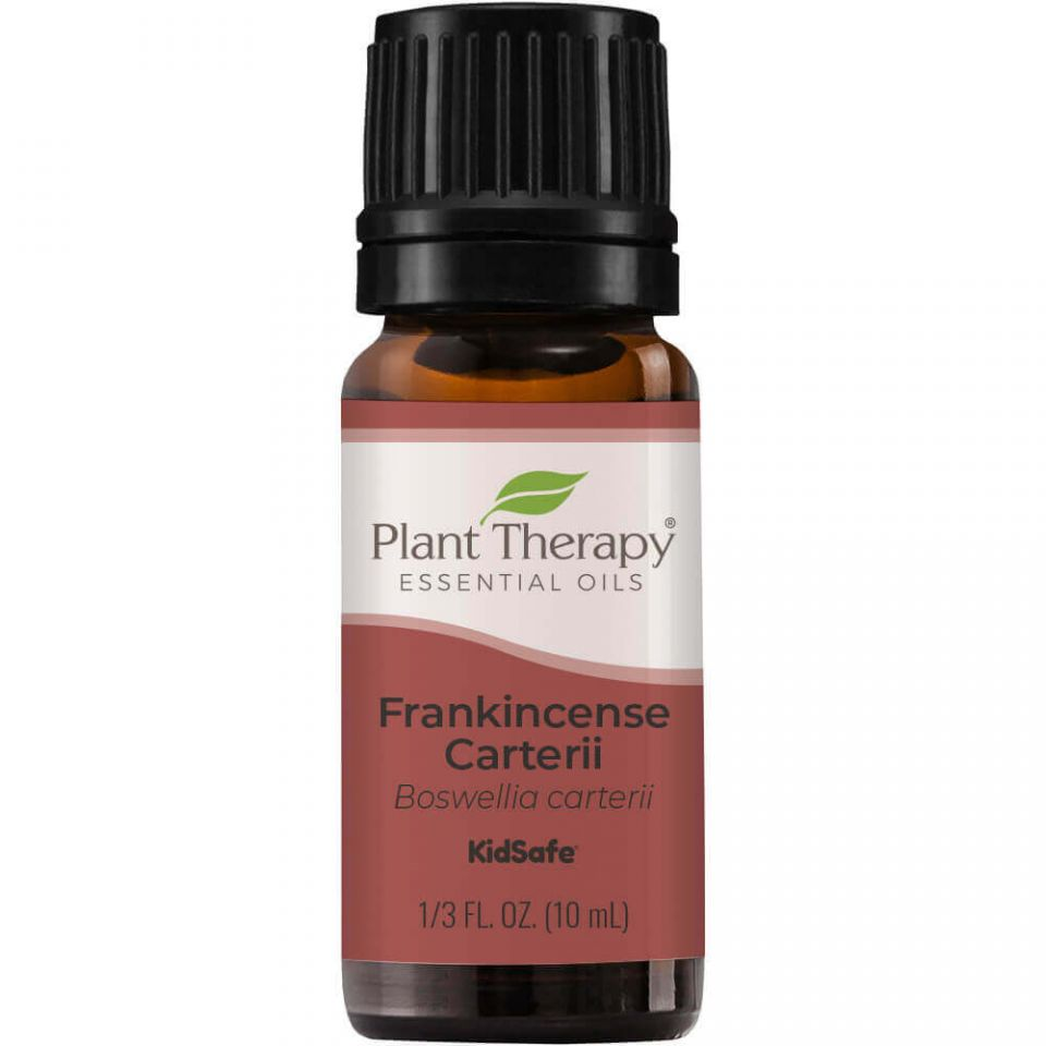 Plant Therapy Frankincense Carterii Essential Oil - OilyPod