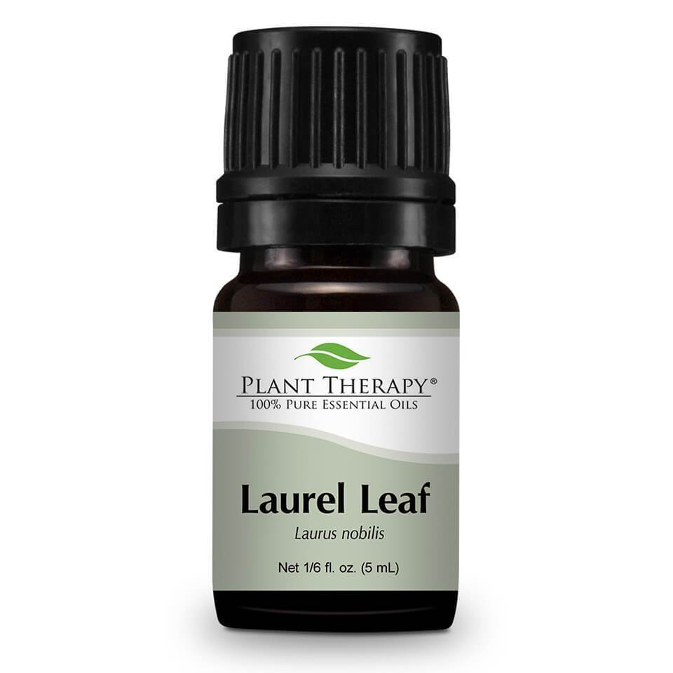 Plant Therapy Laurel Leaf Essential Oil - OilyPod