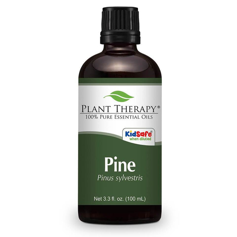 Plant Therapy Pine Scots Essential Oil - OilyPod