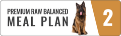 Premium raw food meal plan for dogs