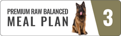 Customised premium balanced raw food meal plan for all dogs