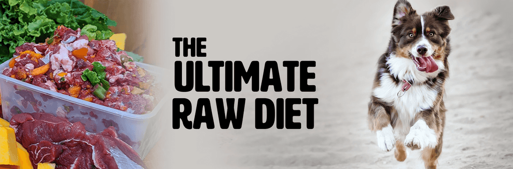 Ultimate raw feeding for dogs