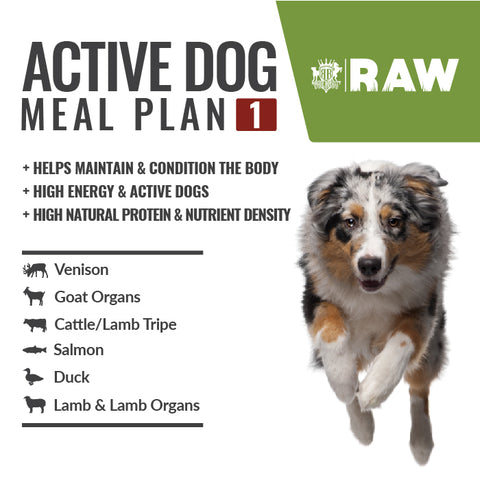 MEAL PLAN - ACTIVE DOG #3