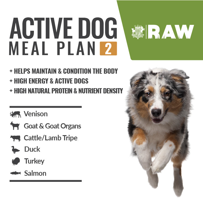 MEAL PLAN - ACTIVE DOG #2 For High Energy