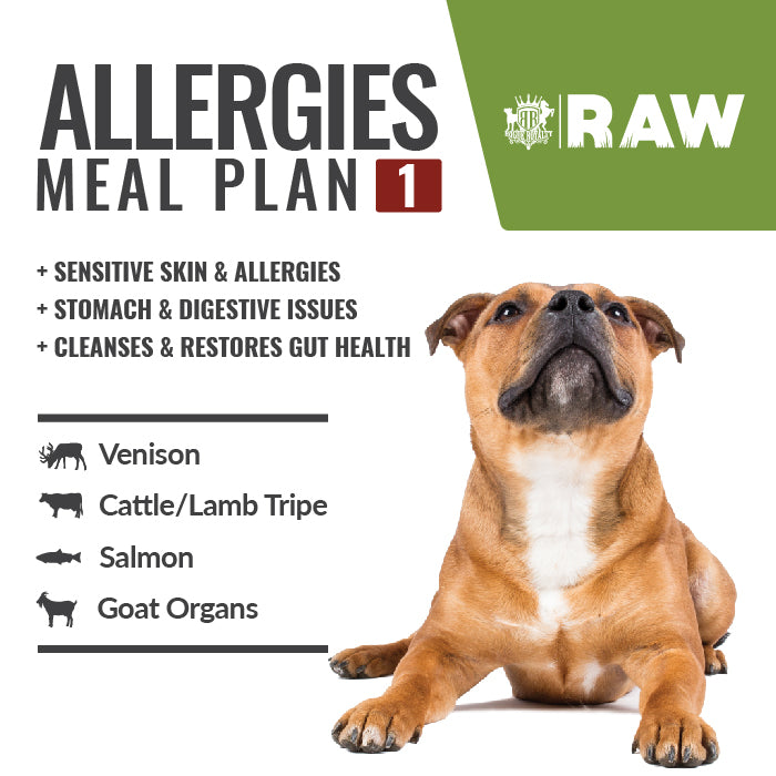 Buy MEAL PLAN For Sensitive Skin & Allergies