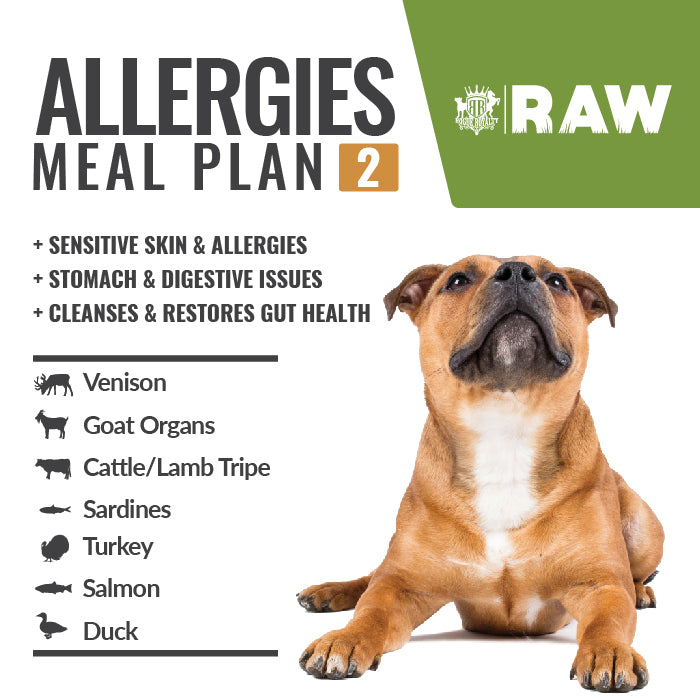 MEAL PLAN - ALLERGIES #2
