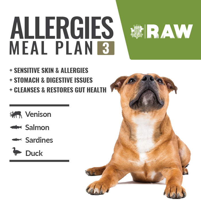 MEAL PLAN - ALLERGIES For Sensitive Skin Dogs