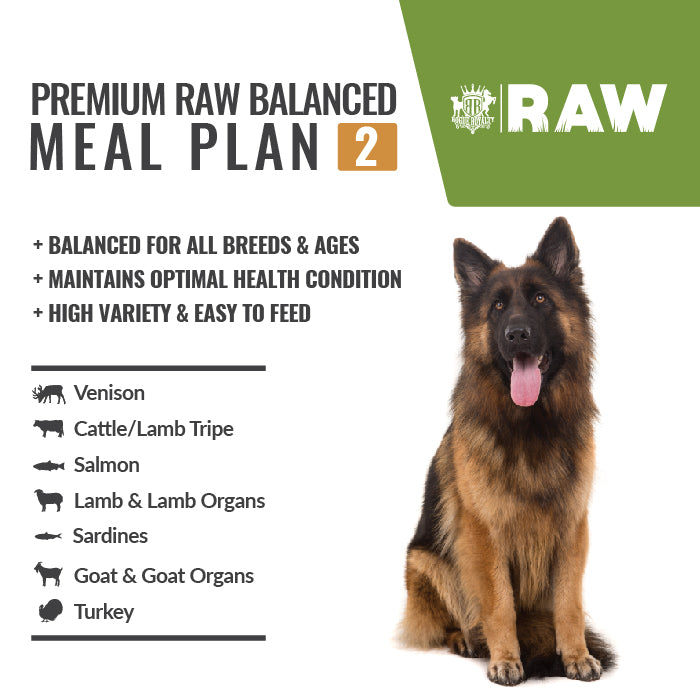 MEAL PLAN - PREMIUM RAW BALANCED #2