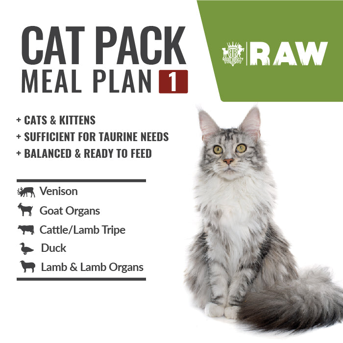 Order Online MEAL PLAN For CATS & KITTENS