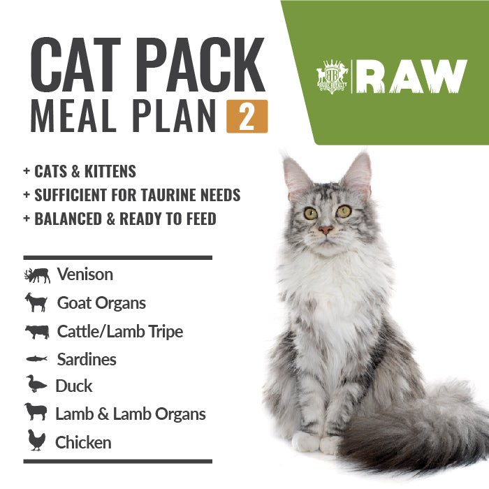 Buy MEAL PLAN For CATS & KITTENS - Order Online