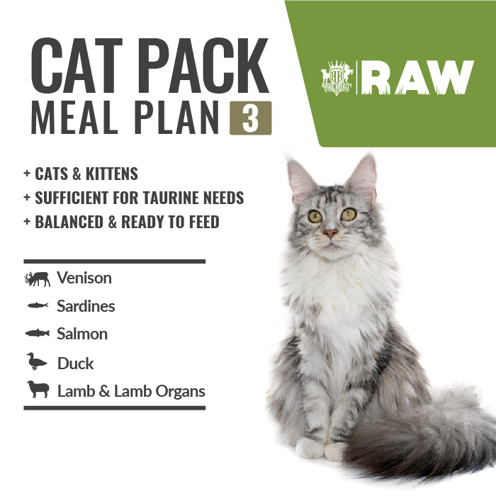 MEAL PLAN For Cats Order Online