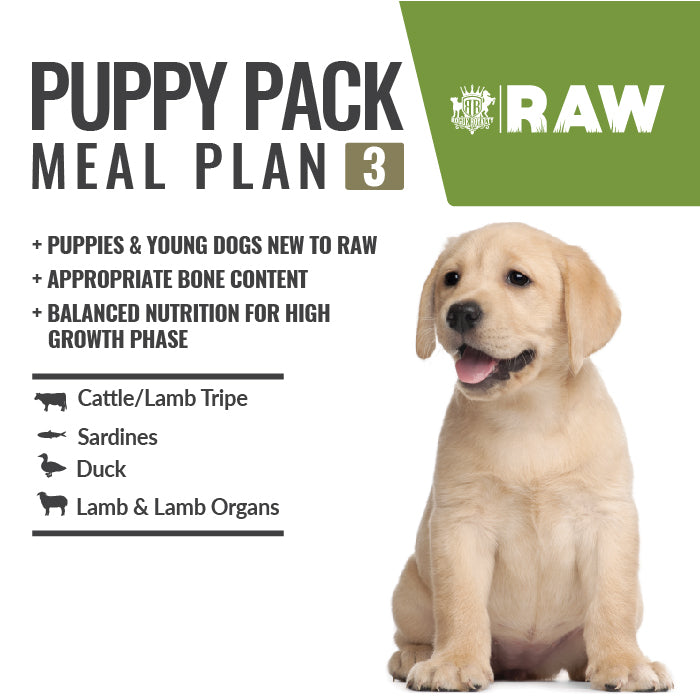 Buy Online MEAL PLAN - PUPPY PACK