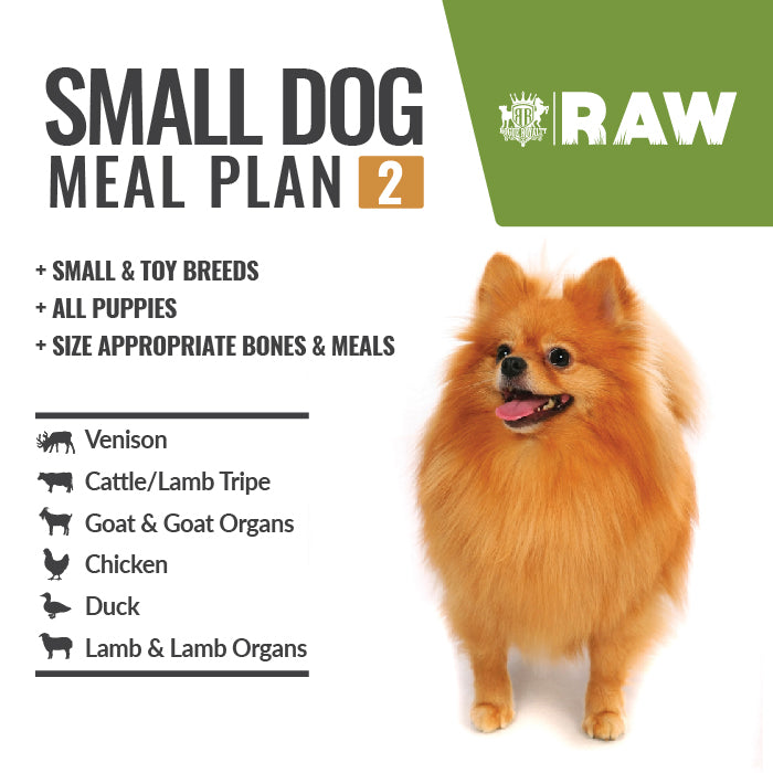MEAL PLAN - SMALL DOG #2