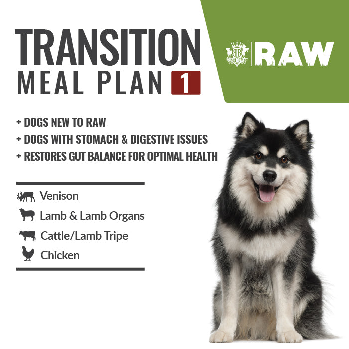 Buy Transition Meal Plan
