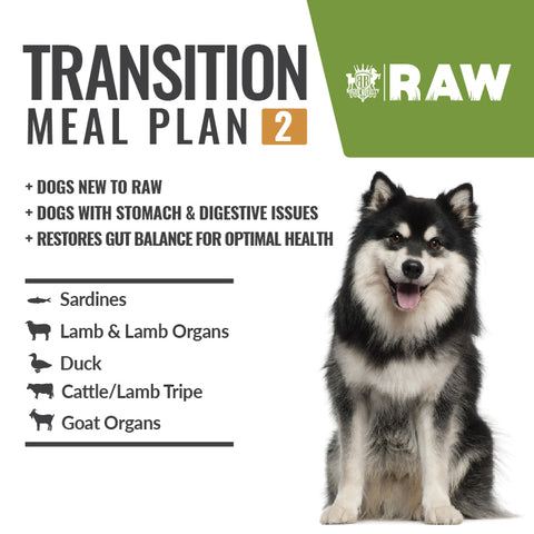 MEAL PLAN - MASS GAIN+ #2