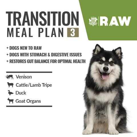 MEAL PLAN - TRANSITION #2