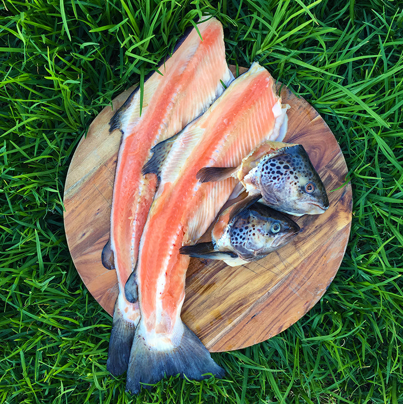 Salmon heads and frames, specialits raw feeding dog supplies.