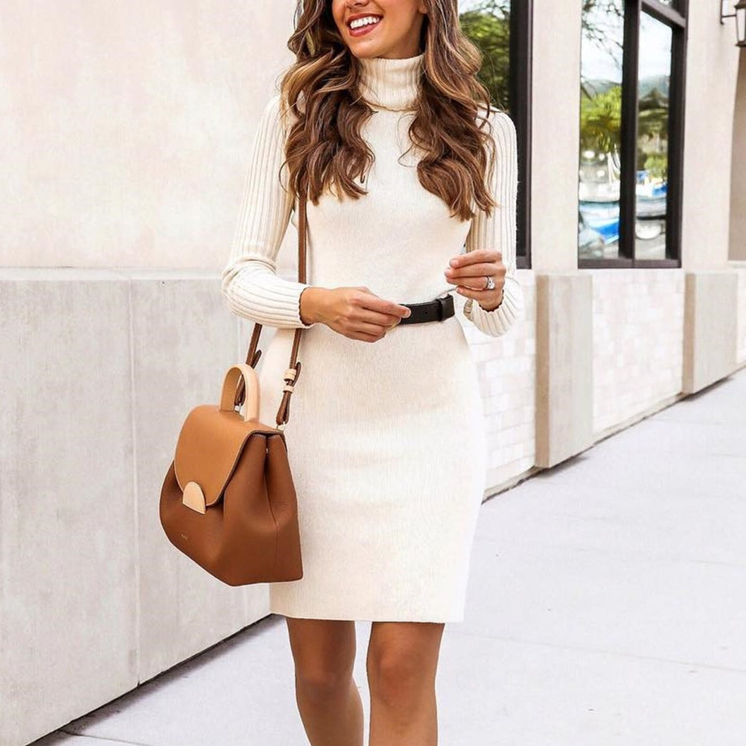 Elegant Turtleneck Slim Flit Bodycon Sweater Mini Dress