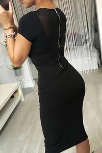 Round Neck  See Through  Plain  Long Sleeve Bodycon Dresses