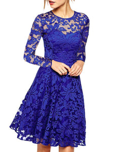 Round Neck See-Through Plain Lace Skater Dress