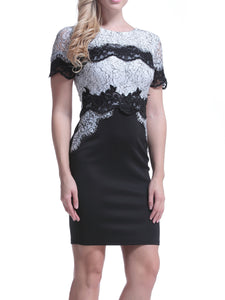 Round Neck  Lace  Blend Bodycon Dress