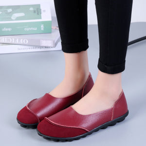 Autumn New Peas Shoes Candy Color Patchwork Casual Flat&Loafers