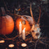 Our Top Tips For Making Halloween More Sustainable!