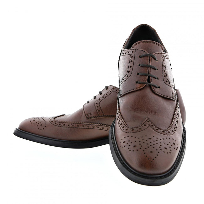 NOAH Achille Brogue - Brown - Veenofs