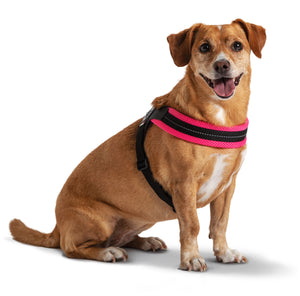 Easy Fit Mesh Fluo Pink Harness with Adjustable Girth