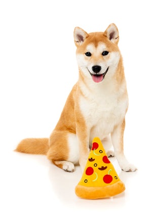 Pizza Dog Toy