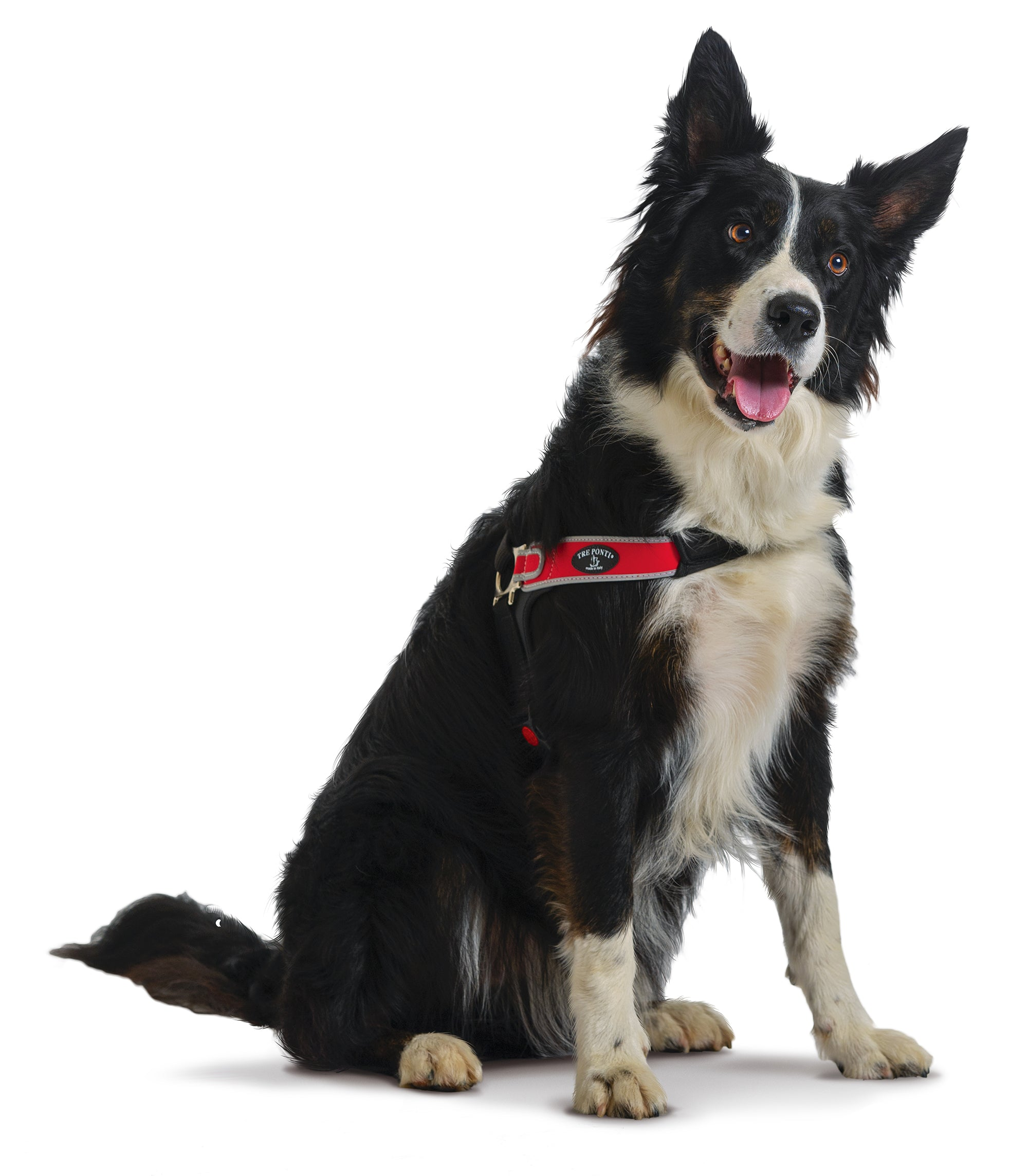 Forza Anti-Pull Red Harness