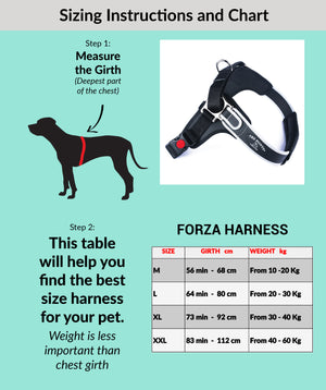 Forza Anti-Pull Black Harness