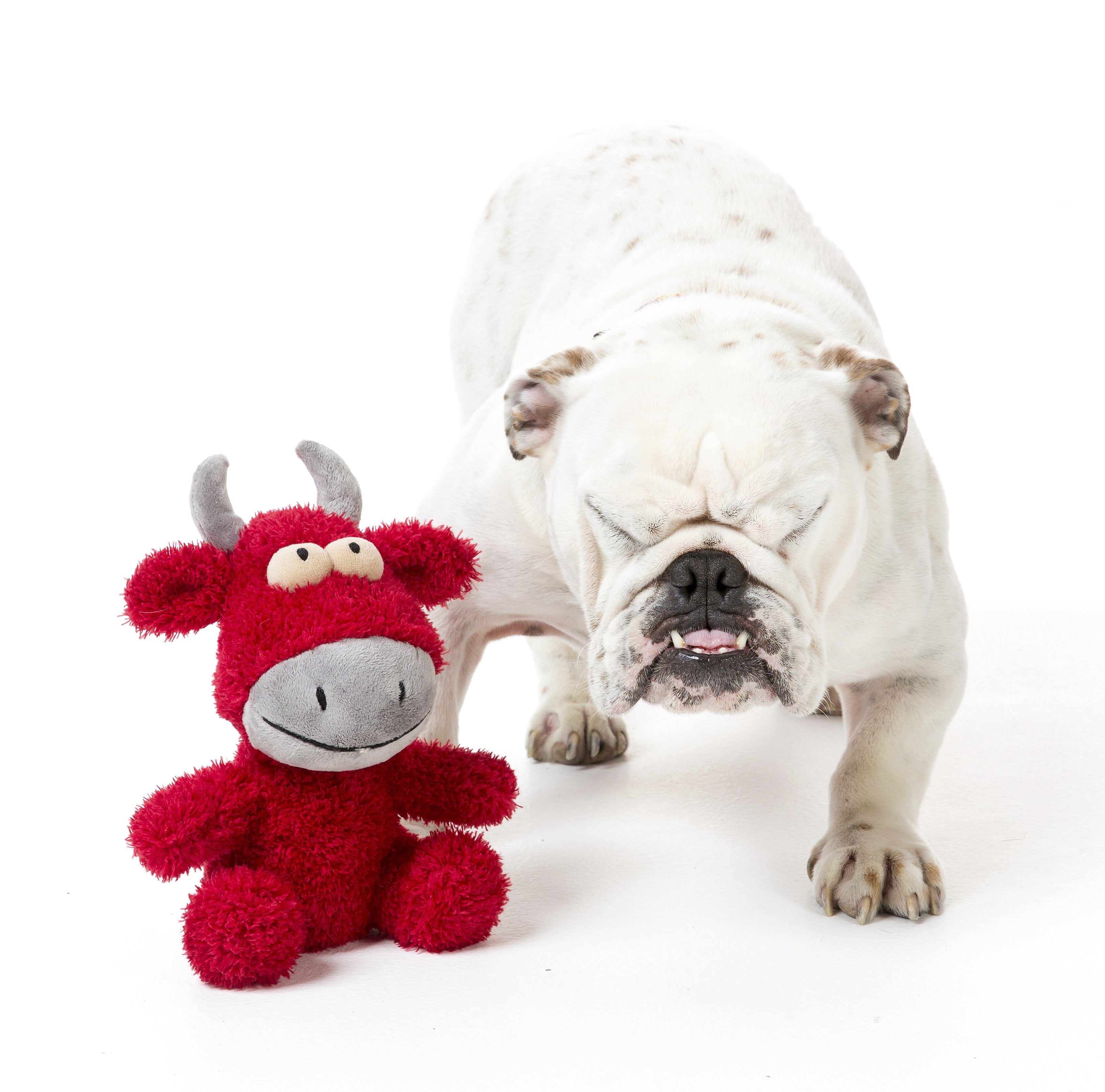 Jordan The Bull Plush Dog Toy