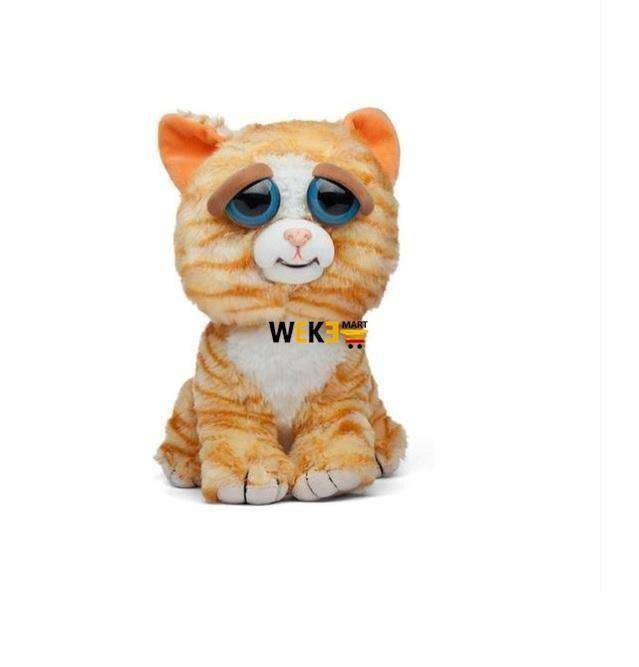 FEISTY FUNNY EXPRESSION PETS PLUSH TOY - The Pet Needs