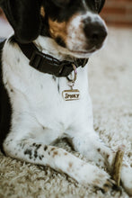 Beagle dog ID tag Smoky