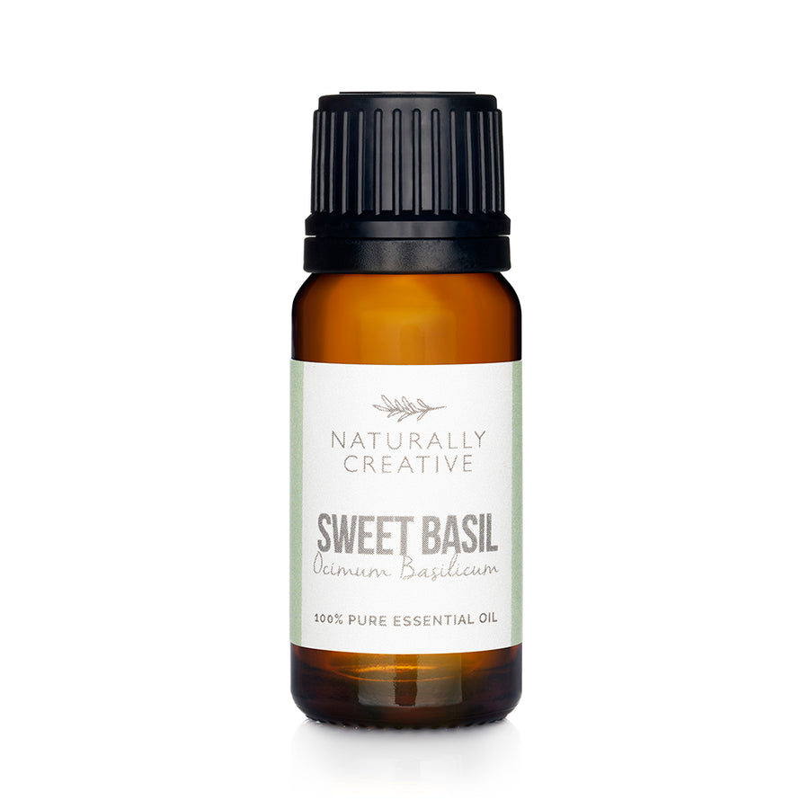 Sweet Basil ssential oil
