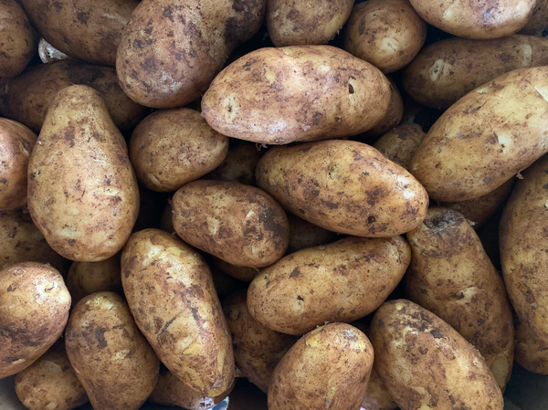Weekly Subscription of Dutch Cream Potato 18kg