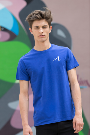 Essential Mens T-Shirt (4 Colours)