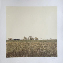 "Enrique CATTANEO, ""Paisaje"", Silkscreen (CAT323)"