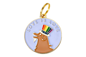 'Love is Love' Collar Tag