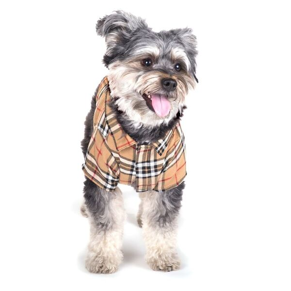 Tan Plaid Dog Button Up Shirt